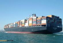 صادرات محصولات کشاورزی و معضلات آن